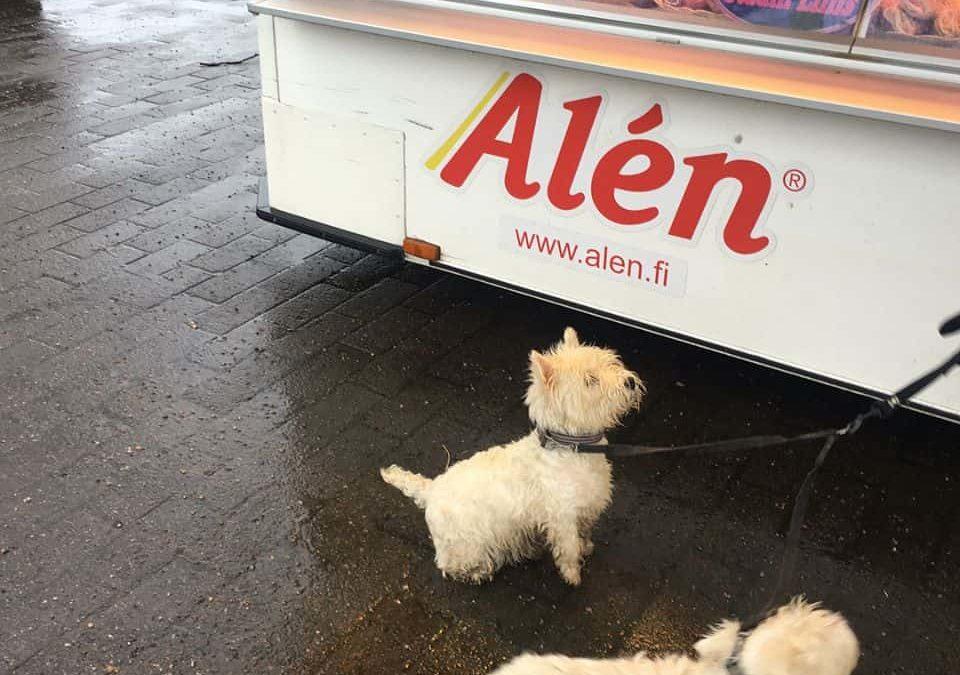 Alen on the road westiet